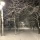 В Курской области обещают мокрый снег, туман и гололедицу